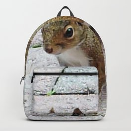 Squirreling Around Backpack
