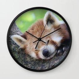 Red_Panda_20150705_by_JAMFoto Wall Clock