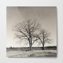 Tree No. 57 Metal Print