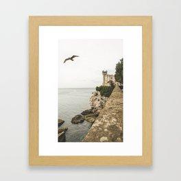 Flying on the castle Framed Art Print