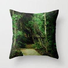 Entrance - color Throw Pillow