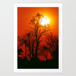 Vibrant Sunset Art Print