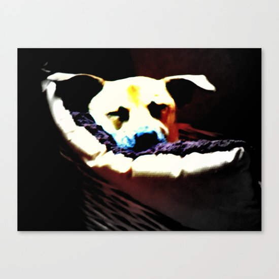 sleeping puppy stuck in basket Canvas Print