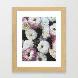Romantic Petals Framed Art Print