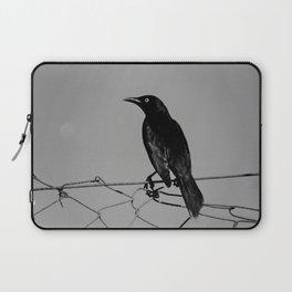 Carib Grackle Laptop Sleeve