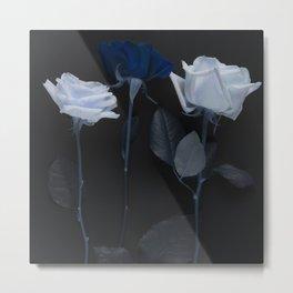 Blue roses on black Metal Print