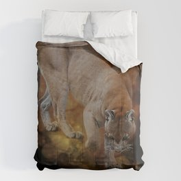 A Mountain lion's decent Comforters