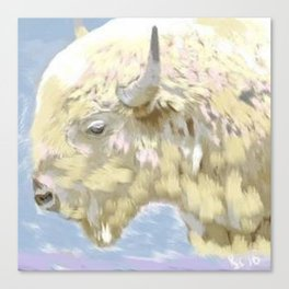 White buffalo calf Canvas Print