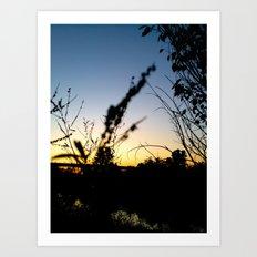 Sunset Contrast Art Print