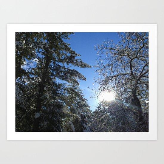 Winter Snow Light Art Print