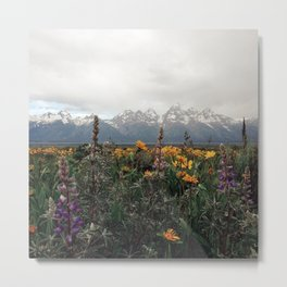 Wildflowers and Mountains - Summer in the Tetons Metal Print
