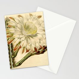Cereus aethiops Stationery Cards