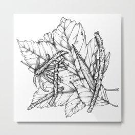Leaves and Sticks Metal Print