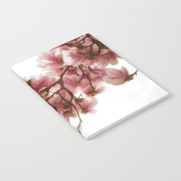 Magnolia tree, pretty pink blooms Notebook