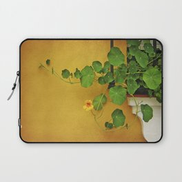Window Box Laptop Sleeve