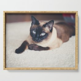 Siamese Cat Serving Tray