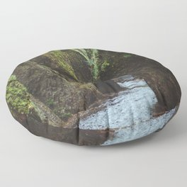 Oneonta Gorge Floor Pillow
