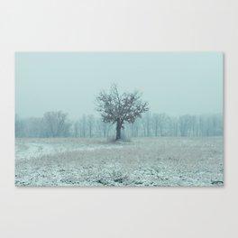 Union Winter 1 Canvas Print