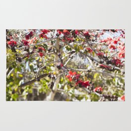 Red Cotton Tree Rug