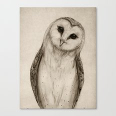 Barn Owl Sketch Canvas Print