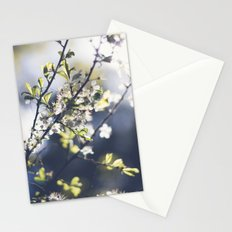 Backlight Blooms Stationery Cards