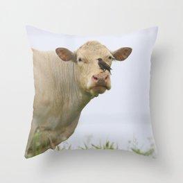 Cow Bird Throw Pillow