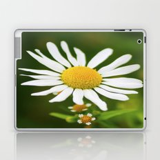 Wild Daisy Laptop & iPad Skin