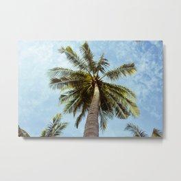 Miami Palm Trees Metal Print