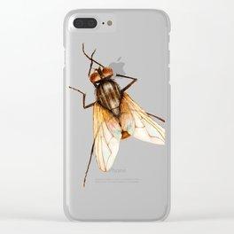 Musca Domestica Clear iPhone Case