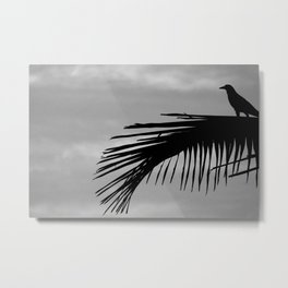 Bird silhouette with palm tree leaf in the Caribbean Metal Print