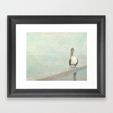 Pelican Bird Framed Art Print