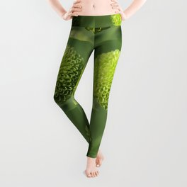 Green Button Pom Chrysanthemum Leggings
