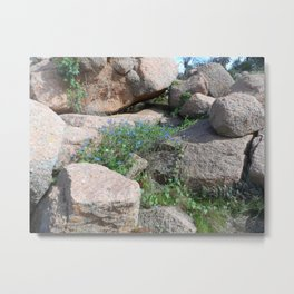 Granite and Wildflowers Metal Print