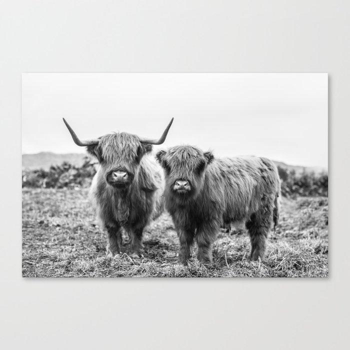 Highland Cow & Calf Canvas Print