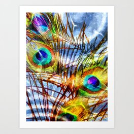 Pavo Feathers Under Water Art Print