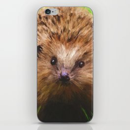 Hedgehog in the Grass iPhone Skin
