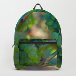 Sauvignon Blanc Grapes on the Vine Backpack