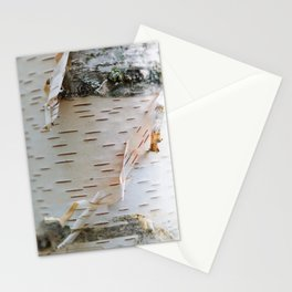 Paper Birch Stationery Cards