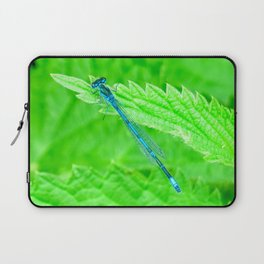 Blue Damselfly Laptop Sleeve
