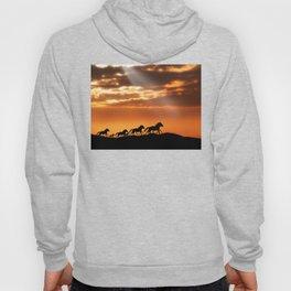 Horses in sunset Hoody