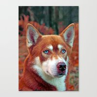 ginger Canvas Prints featuring ginger by Doug McRae