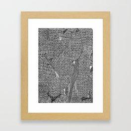 Hic Sunt Dracones (iii) Framed Art Print