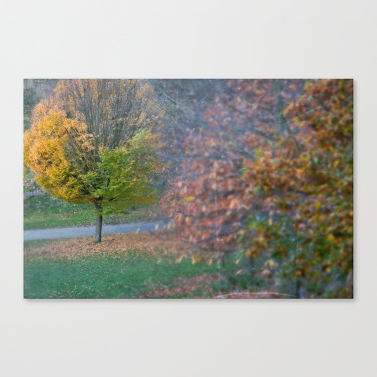 Autumnal Canvas Print
