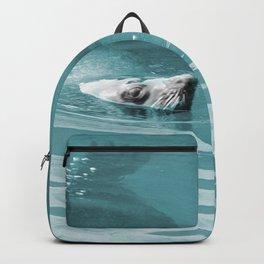 Wild Harbor Seal Swimming Wildlife Backpack