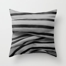 raybands Throw Pillow
