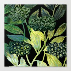 Dark floral with golden accent Canvas Print