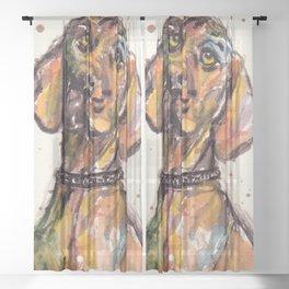 Hungarian Vizsla Dog Closeup Sheer Curtain