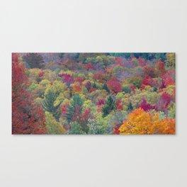 Fall Colors of Northern Michigan Canvas Print