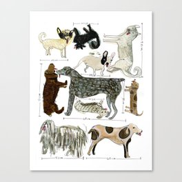 Dogs' Specificity Canvas Print