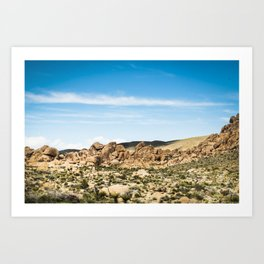 Big Rock 7406 Joshua Tree Art Print